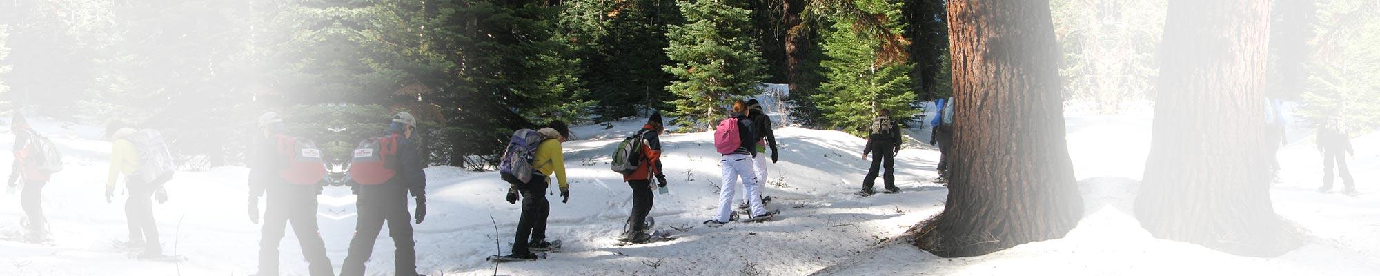 Montecito Sequoia Lodge, Snow
