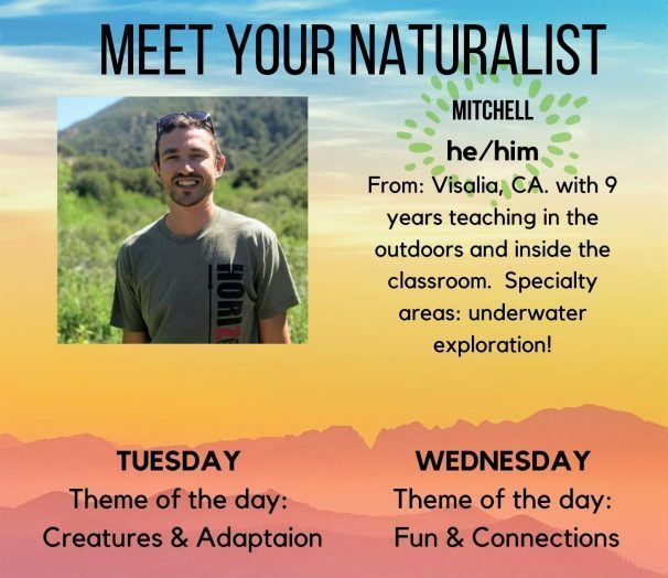 meet your naturalist- mitchell w