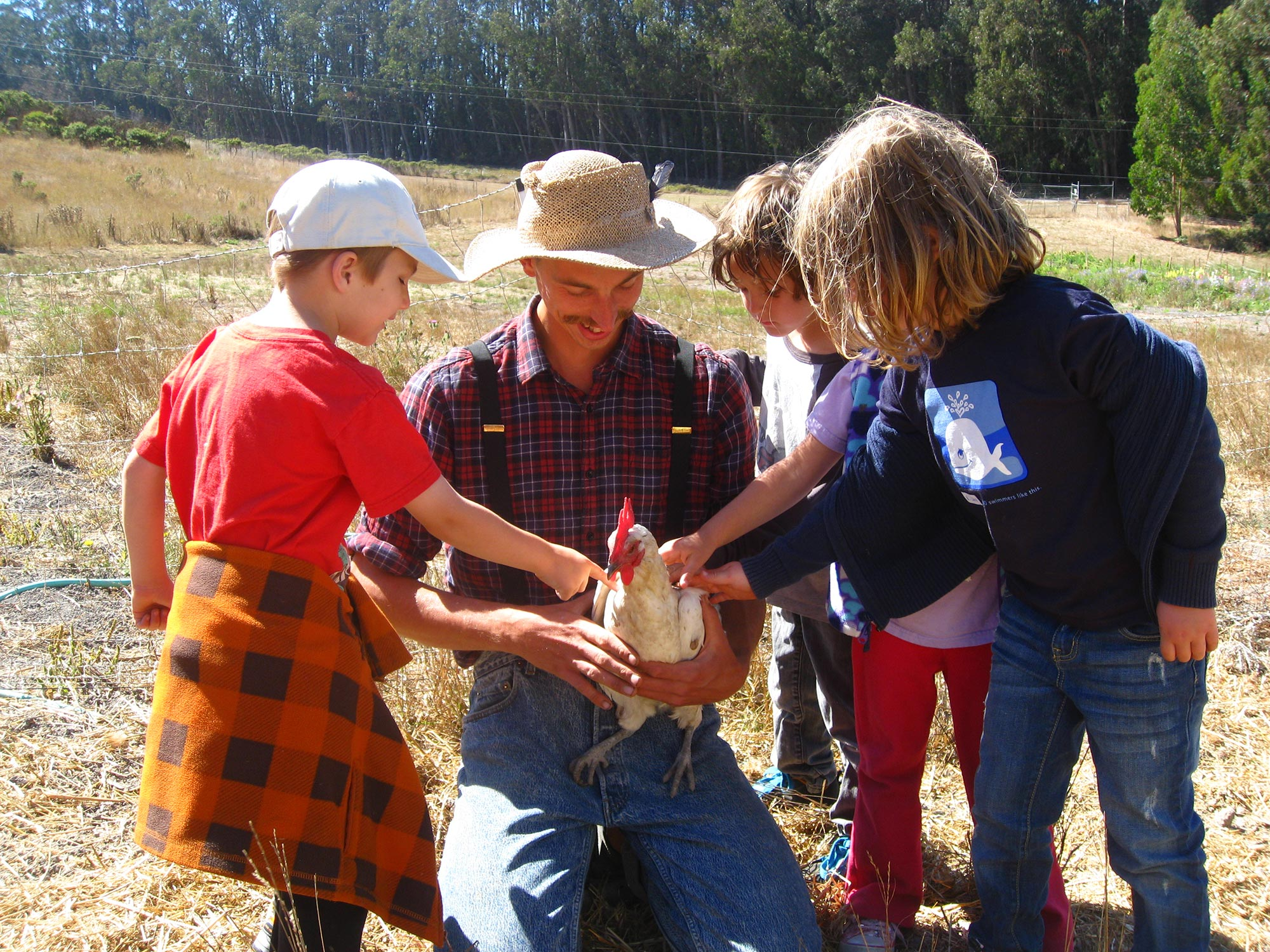 Farm, Environmental Science